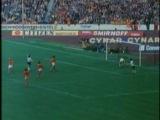 Обзор чемпионатов мира по футболу 1954-1994